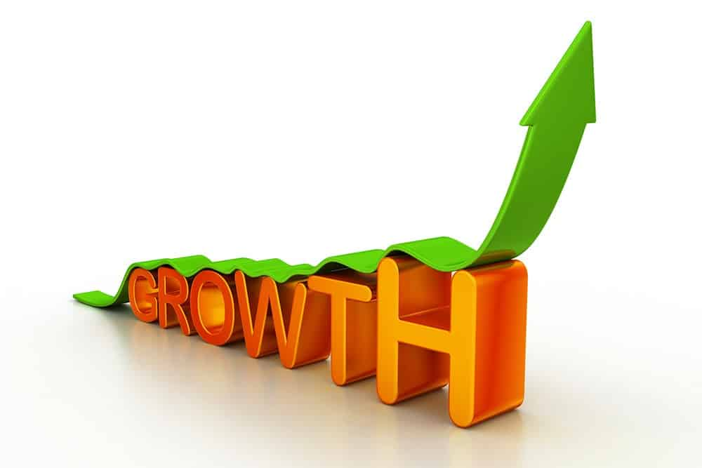 growth agencies focus on business success